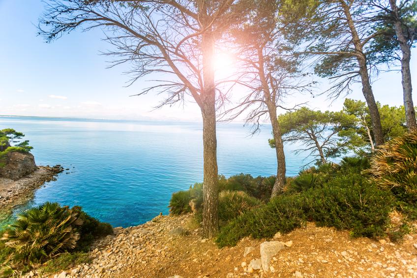 Tipps: Das Ist Beim Auswandern Auf Die Balearen Zu Beachten