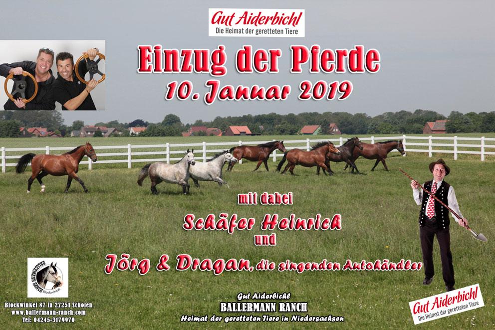 Ballermann – Die Pferde Kommen!