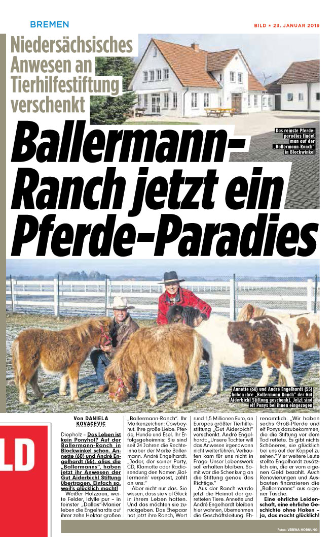 BILD Bremen Im Pferdeparadies